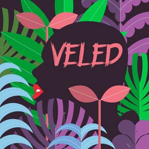 COMPACT DISCO - Veled